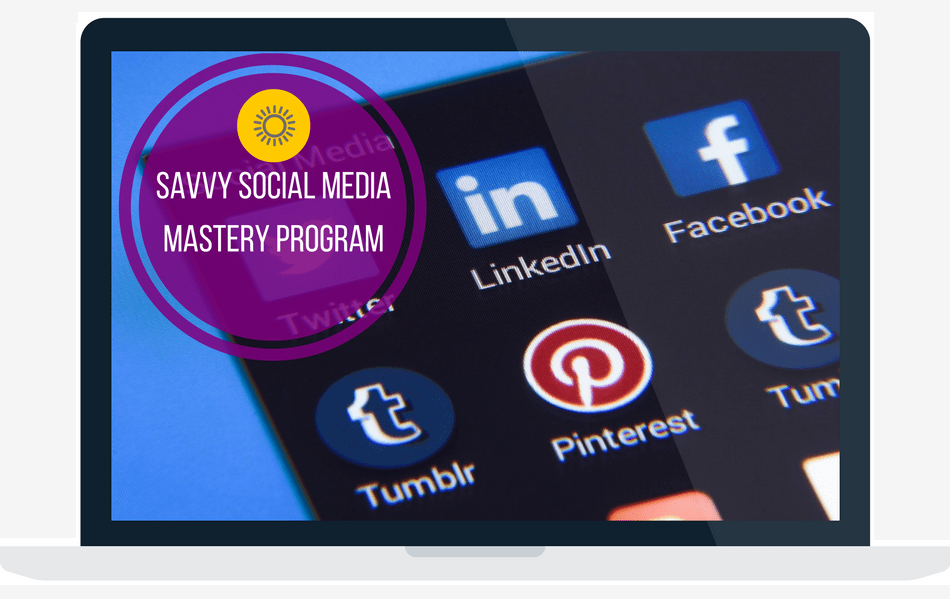 savvy social media marketing program